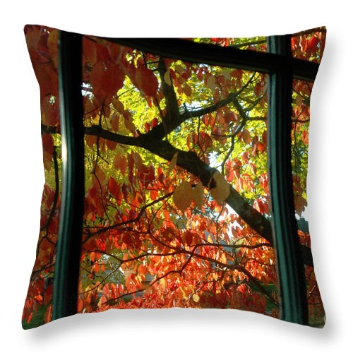 Leaves Throw Pillow featuring the photograph Pane Frames by Trish Hale