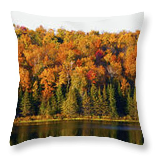 Autumn Colors Throw Pillow featuring the photograph Panorama Of Trees Along The Waters Edge by David Chapman