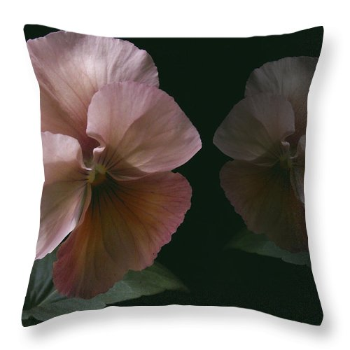 Pansy Throw Pillow featuring the photograph Pansy by Nancy Griswold
