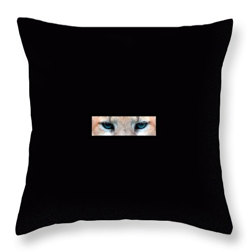 Eyes Throw Pillow featuring the photograph Panther Eyes by Sumit Mehndiratta
