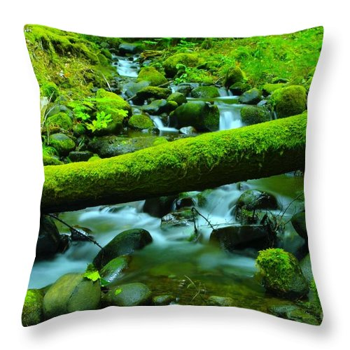 Water Throw Pillow featuring the photograph Paradise Of Mossy Logs And Slow Water  by Jeff Swan