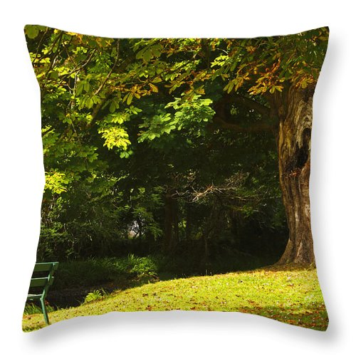 Bench Throw Pillow featuring the photograph Park Bench Beside The Owenriff River In by Trish Punch