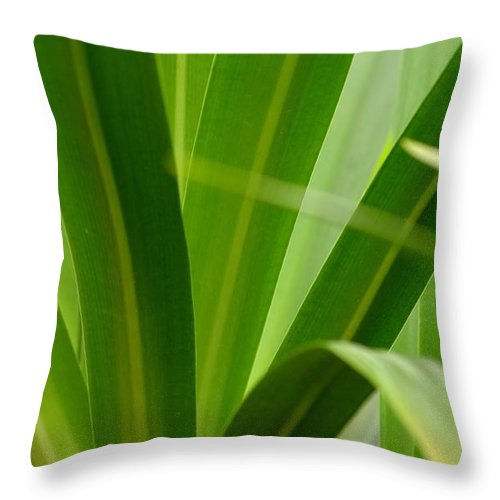 Particularly Throw Pillow featuring the photograph Particularly Green by Maria Urso