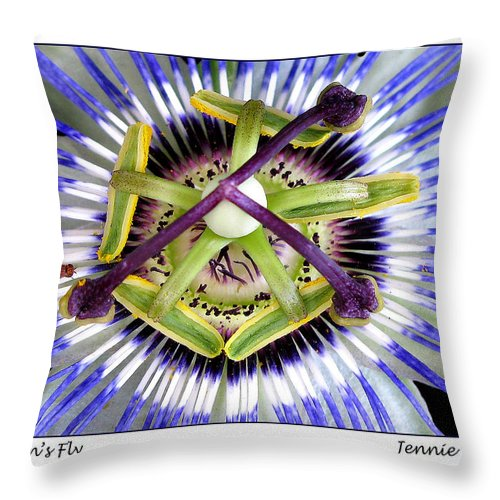 Passion Flower Throw Pillow featuring the photograph Passion's Fly by Jennie Breeze