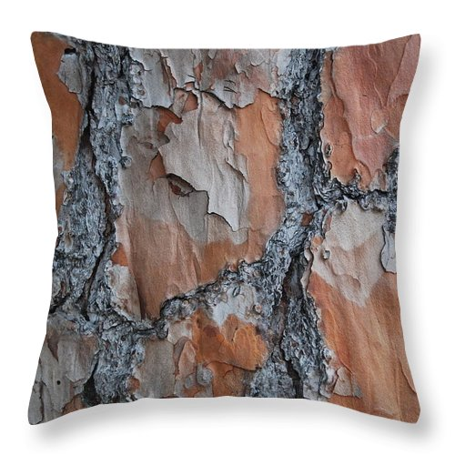 Tree Throw Pillow featuring the photograph Path Work by Michael L Gentile