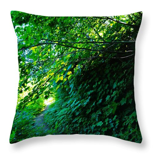 Leaves Throw Pillow featuring the photograph Pathway by Jeff Swan