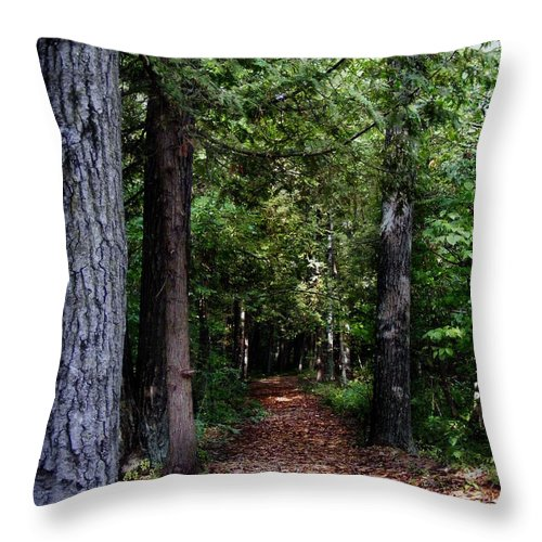 Pathway Throw Pillow featuring the photograph Pathway by Ms Judi