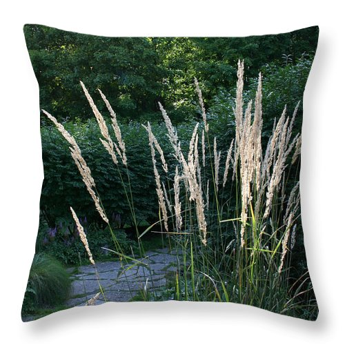 Outdoors Throw Pillow featuring the photograph Pathway by Susan Herber
