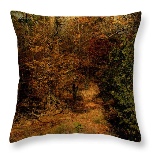 Path Throw Pillow featuring the photograph Pathways by Nina Fosdick