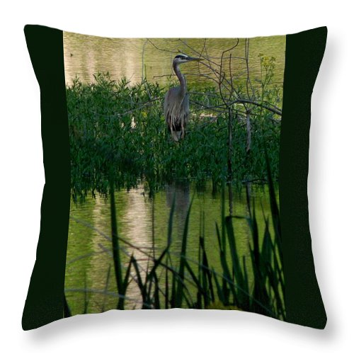 Stork Throw Pillow featuring the photograph Patience by Mark Moore