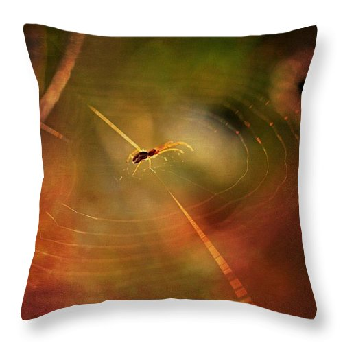 Spider Throw Pillow featuring the photograph Patience by Michele Cornelius