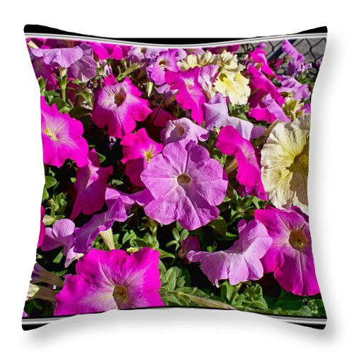 Nature Throw Pillow featuring the photograph Patunias Galore by Debbie Portwood