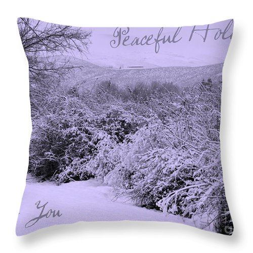 Peaceful Holiday Card Throw Pillow featuring the photograph Peaceful Holidays To You by Carol Groenen