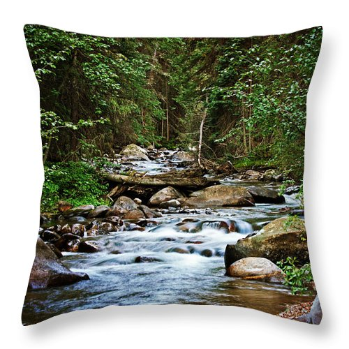 Mountain Stream Throw Pillow featuring the photograph Peaceful Mountain River by Lisa Porier