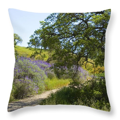 Knights Ferry Throw Pillow featuring the photograph Peaceful Path by Jim And Emily Bush
