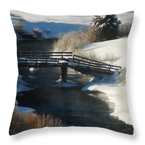Snow Throw Pillow featuring the photograph Peaceful Winter Day by Lucy Bounds