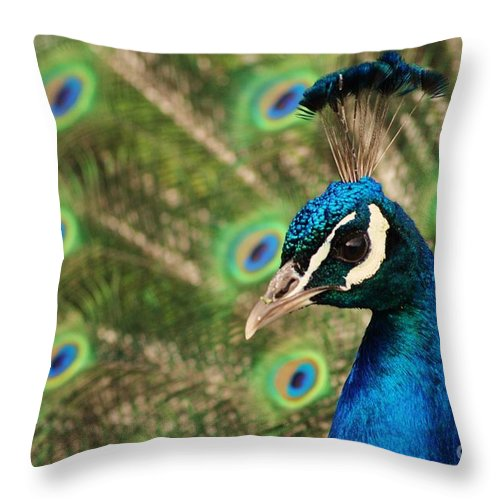 Feathers Throw Pillow featuring the photograph Peacock Profile by Frank Larkin
