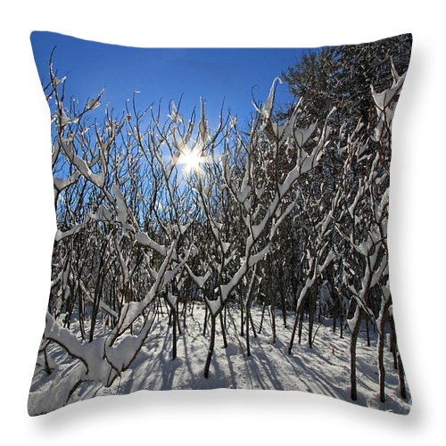 Snow Throw Pillow featuring the photograph Peaking Sun by Lloyd Alexander