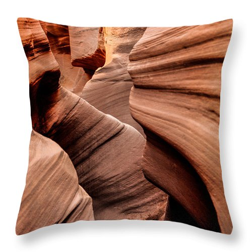 Outdoor Throw Pillow featuring the photograph Peek A Boo by Chad Dutson