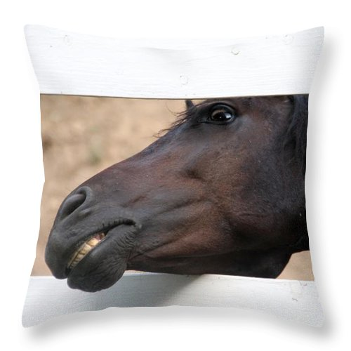 Horse Throw Pillow featuring the photograph Peek A Boo by Elizabeth Winter