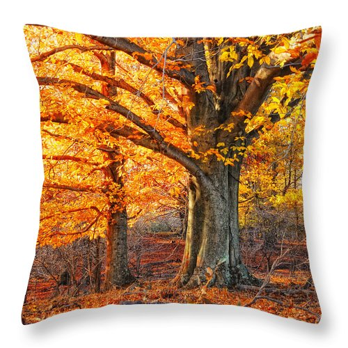 Autumn Woods Throw Pillow featuring the photograph Peggy's Woods by Peg Runyan