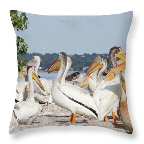 Pelicans Throw Pillow featuring the photograph Pelican Island by Jane Coenen