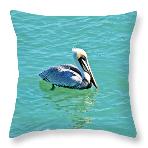 Pelican Throw Pillow featuring the photograph Pelican Portrait by Aimee L Maher ALM GALLERY
