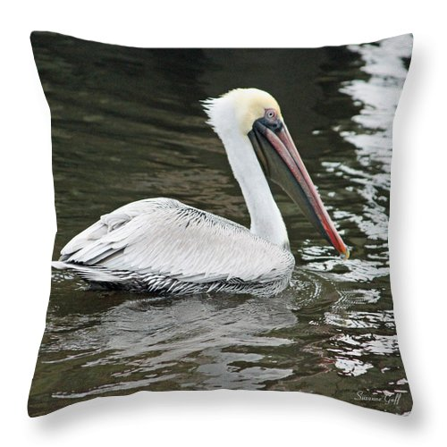 Pelican Throw Pillow featuring the photograph Pelican Solo by Suzanne Gaff