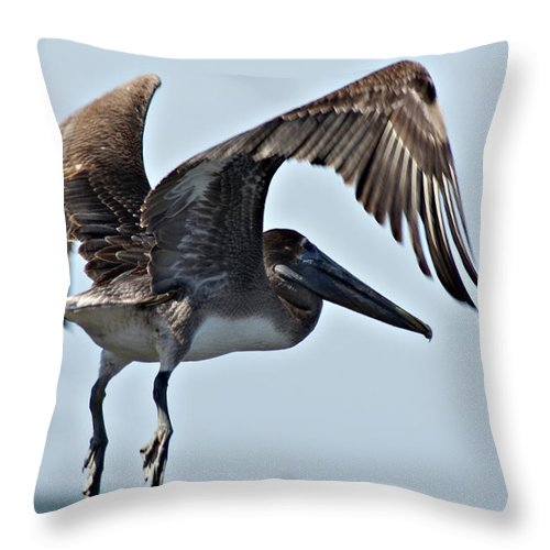 Pelican Throw Pillow featuring the photograph Pelican V by Joe Faherty