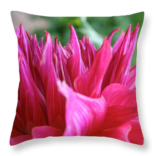 Landscape Throw Pillow featuring the photograph Penhill Dark Monarch by Susan Herber