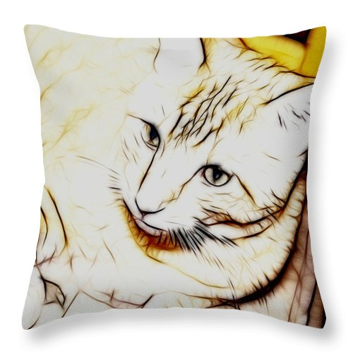Cat Throw Pillow featuring the photograph Pensive by Thomas MacPherson Jr
