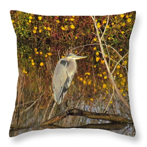Great Blue Heron Throw Pillow featuring the photograph Perching Pretty by Rrrose Pix