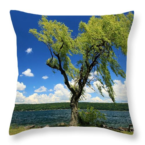 Taughannock Falls State Park Throw Pillow featuring the photograph Perfect Picnic Spot by Adam Jewell