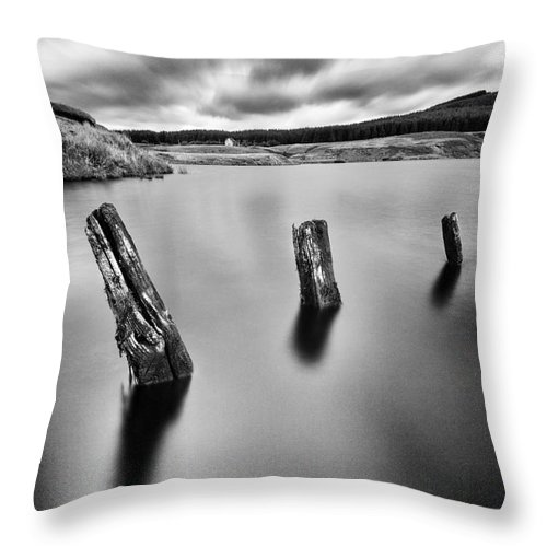Landscape Throw Pillow featuring the photograph Perfectly Still by John Farnan