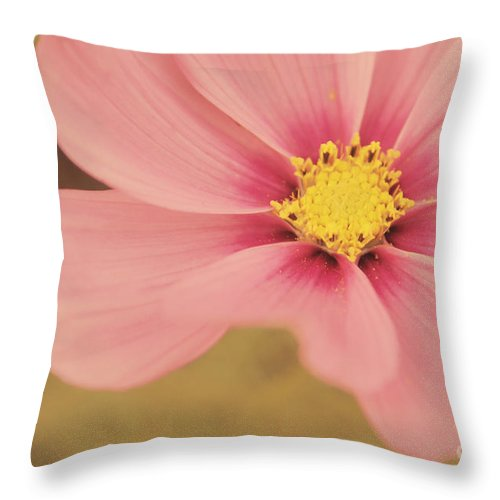 Flower Throw Pillow featuring the photograph Petaline - P05a by Variance Collections