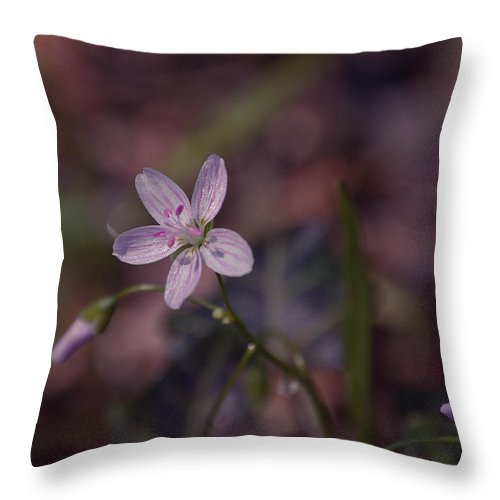 Flower Throw Pillow featuring the photograph Peyton's Petals by Trish Tritz