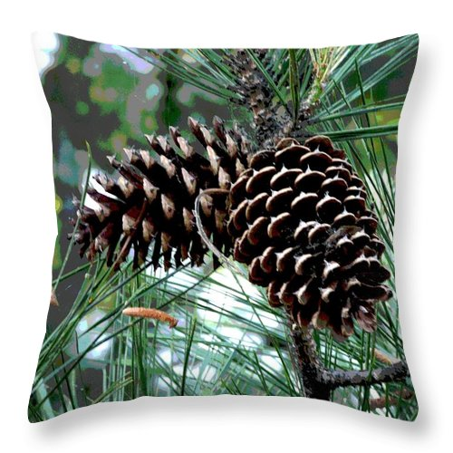 Photo Throw Pillow featuring the photograph Pine Cone 2 by Mark Moore