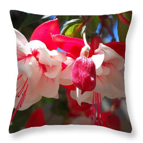 Flower Throw Pillow featuring the photograph Pink And Red Fuchsia by Amy Fose