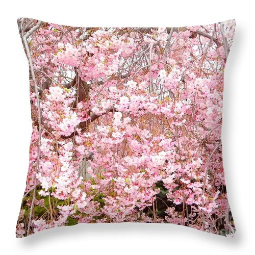 Spring Throw Pillow featuring the photograph Pink Blossoms by Carol Groenen