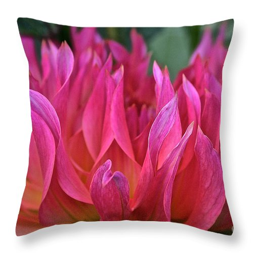 Landscape Throw Pillow featuring the photograph Pink Flames by Susan Herber