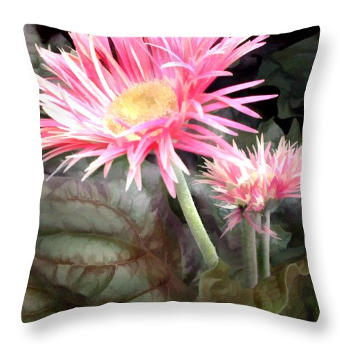 Flower Flowers Garden Daisy Gerber+daisy Daisies Pink Flora Floral Nature Natural Throw Pillow featuring the painting Pink Gerber Daisies by Elaine Plesser
