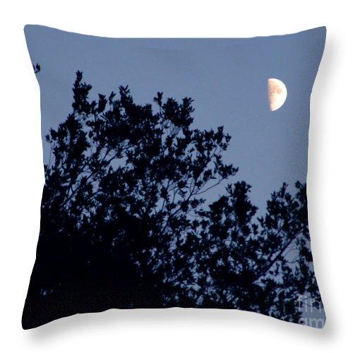Artoffoxvox Throw Pillow featuring the photograph Pink Half Moon Photograph by Kristen Fox