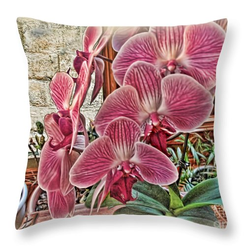 Rudolfiella Throw Pillow featuring the photograph Pink Orchids by Joan Minchak