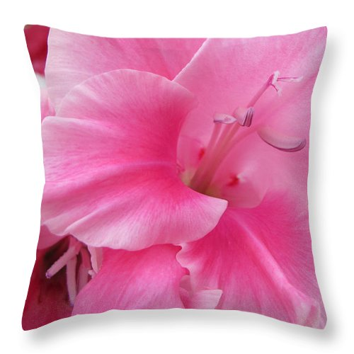 Floral Throw Pillow featuring the photograph Pink Perfusion by Arlene Carmel