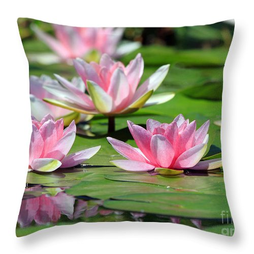 Flowers Throw Pillow featuring the photograph Pink Water Lilies by Jack Schultz