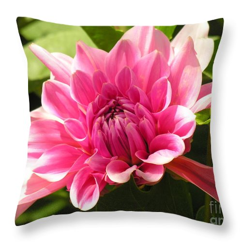 Throw Pillow featuring the photograph Pinky Pink by Diane Greco-Lesser
