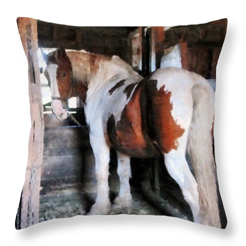 Horse Throw Pillow featuring the photograph Pinto Looking Back by Susan Savad