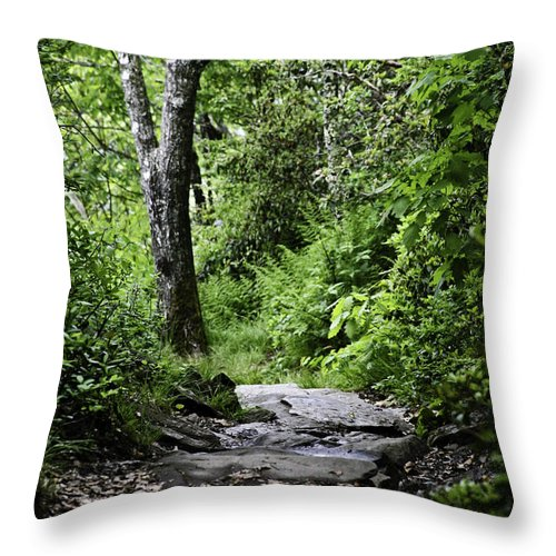 Mount Pisgah Paths Throw Pillow featuring the photograph Pisgah Path by Rob Travis
