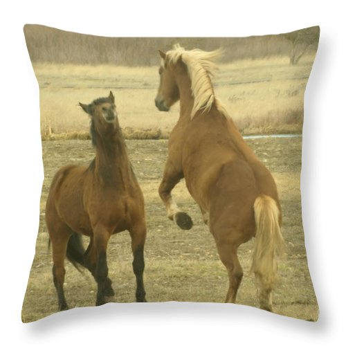Horses Throw Pillow featuring the photograph Playing Around  by Jeff Swan