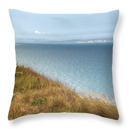 Isle Of Wight Throw Pillow featuring the photograph Point To The Polar Bear by Chris Day
